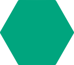 Hexagones rubriques site bdas santé environnementale