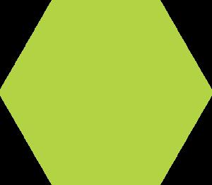 Hexagones rubrique site bdas santé environnementale